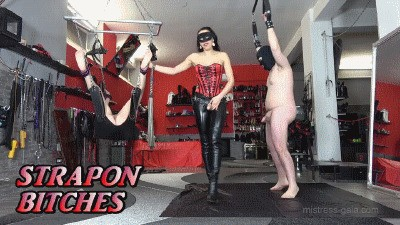 MISTRESS GAIA - STRAPON BITCHES - HD