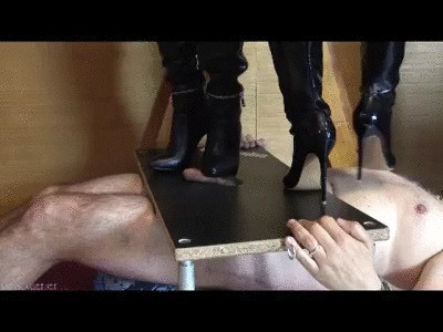 Lady Scarlet - Cock & face box (mobile)