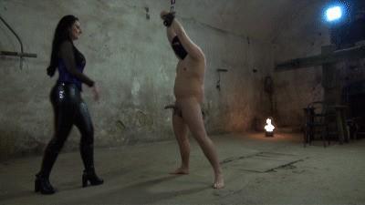 Kicks in die Sklaveneier
