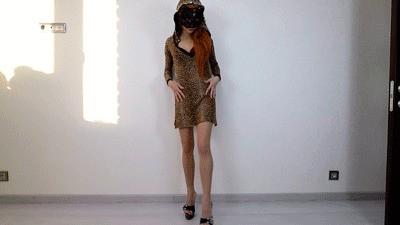Sexy Kitty Shitting