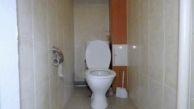 My Toilet Bitch