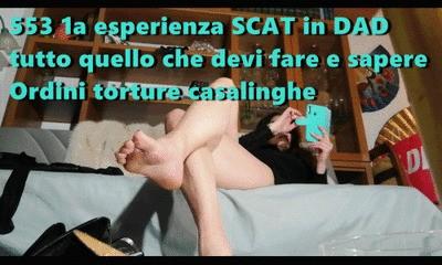 553 1st SCAT experience in DAD (ITA)