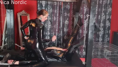PP Slave treatment with milking