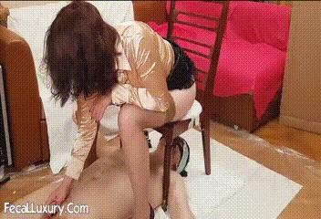 Shit Receptacle Grovels At Madam's Feet