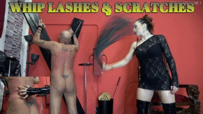 Lady Scarlet - Whip lashes & scratches