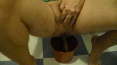 Shitting in a flowerpot